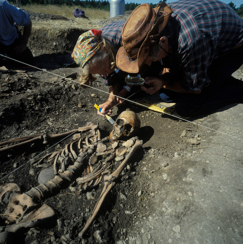 osteologists