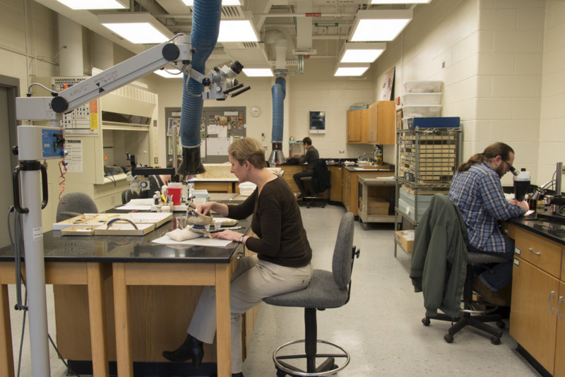 Archaeology Lab view 5