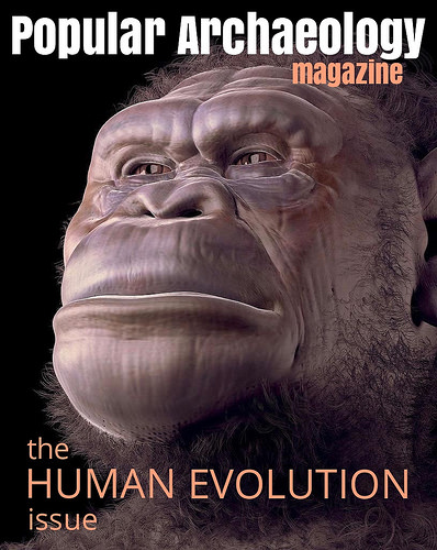 The Human Evolution Issue