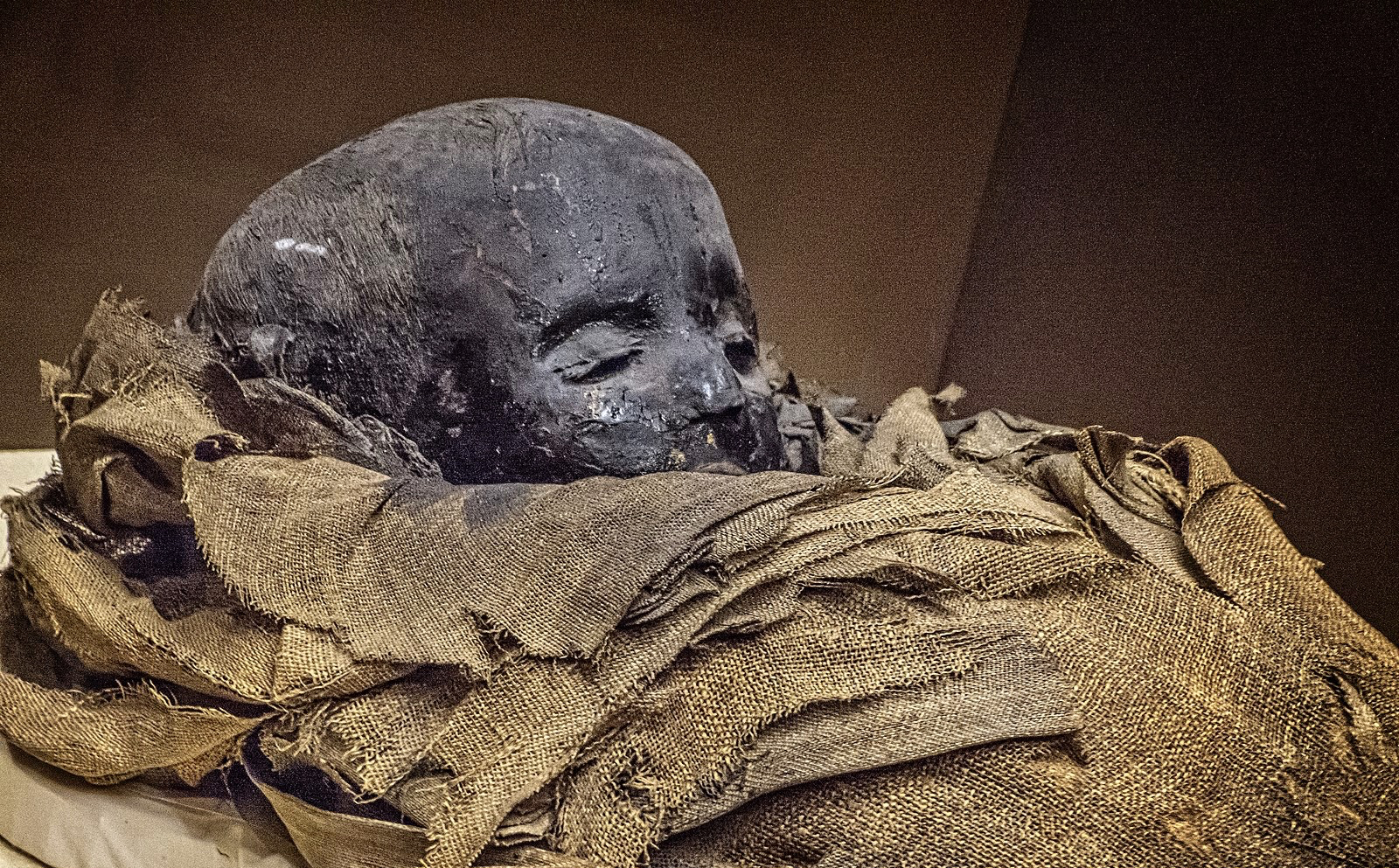 A Few Words About Mummies